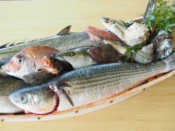 至福の魚料理
